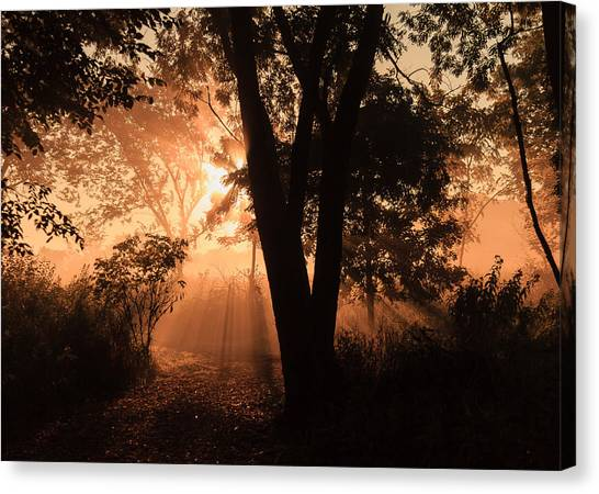 Sunrise In The Marsh 3 Canvas Print