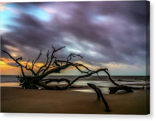 Canvas Print featuring the photograph Sunrise On Driftwood Beach, Jekyll Island, Ga by Michael Sussman