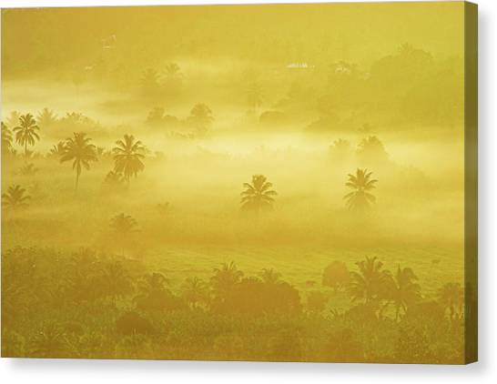 Sunrise On Mist In Roseau Valley- St Lucia Canvas Print by Chester Williams