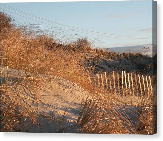 Sunrise On The Dunes Canvas Print by Donald Cameron
