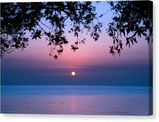 Kuwait Canvas Print - Sunrise Over Sea by Shahbaz Hussain's Photos