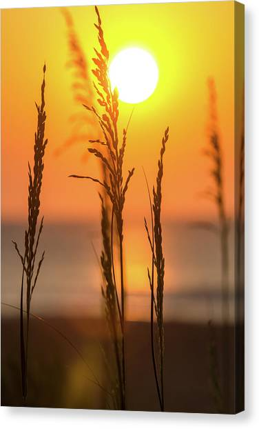 Sunrise Serenity Canvas Print by AM Photography