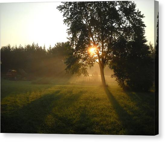 Sunrise Shadows Through Fog Canvas Print