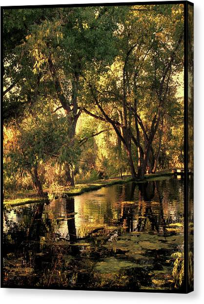 Sunrise Springs Canvas Print