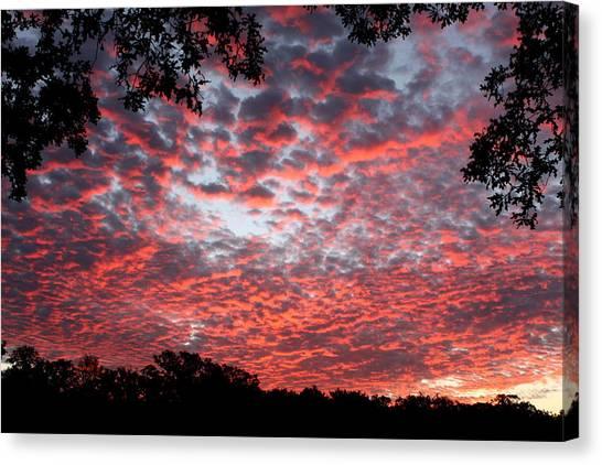 Sunrise Through The Trees Canvas Print