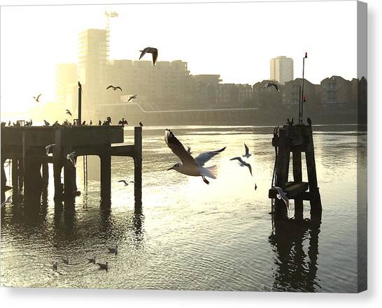 Sunrise With Seagulls Canvas Print