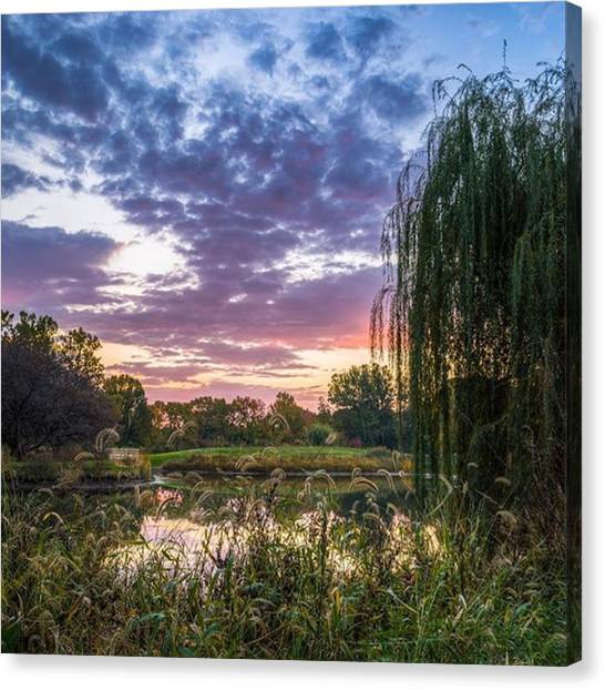 Ponds Canvas Print - Sunrise At The Arboretum by Alex Uhlarik