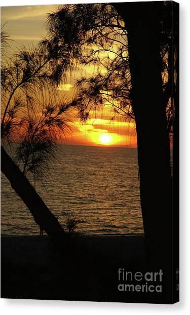Canvas Print - Sunset 1 by Megan Cohen
