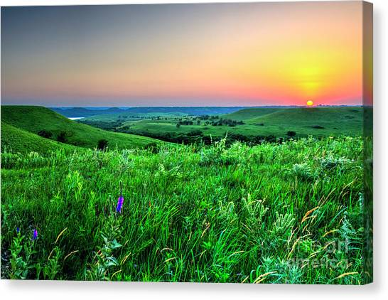 Sunset Along Wildflower Road Canvas Print