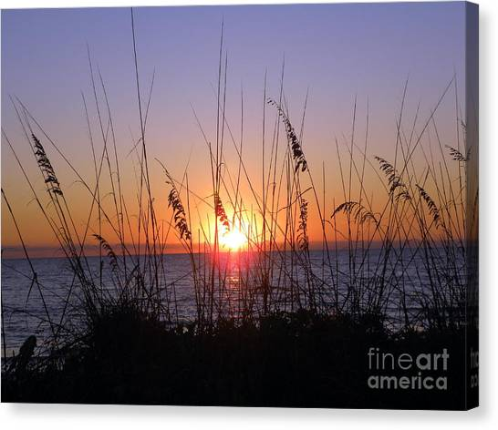 Sunset And Seaoats Canvas Print