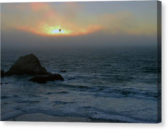 Sunset With The Bird Canvas Print