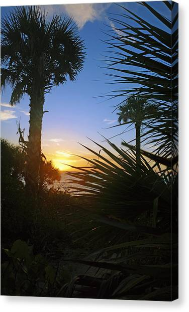 Sunset At Bearefoot Beach In Naples Canvas Print