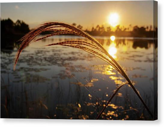 Sunset At Gator Hole 2 Canvas Print