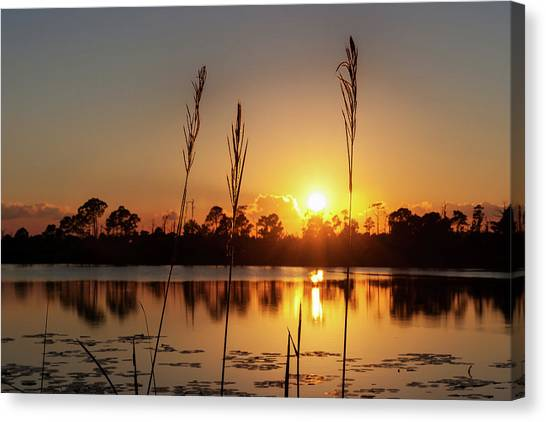 Sunset At Gator Hole 3 Canvas Print