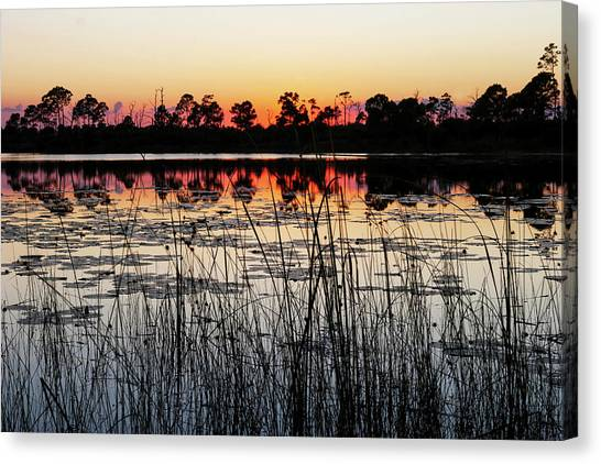 Sunset At Gator Hole Canvas Print