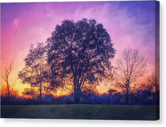 The Nature Center Canvas Print - Sunset At Retzer Nature Center by Jennifer Rondinelli Reilly - Fine Art Photography