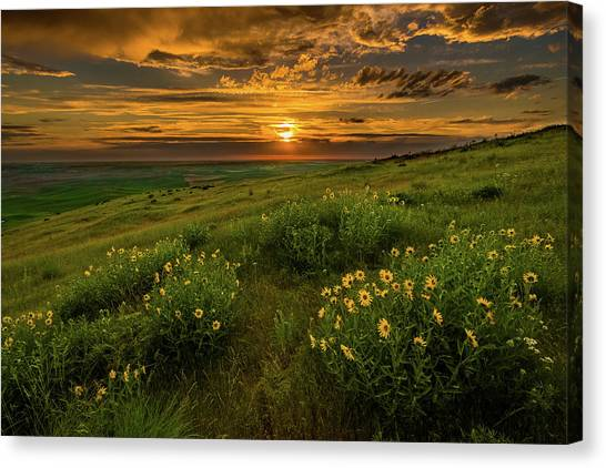 Sunset At Steptoe Butte Canvas Print