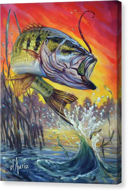 Freshwater Canvas Print - Sunset Bass by Tom Dauria