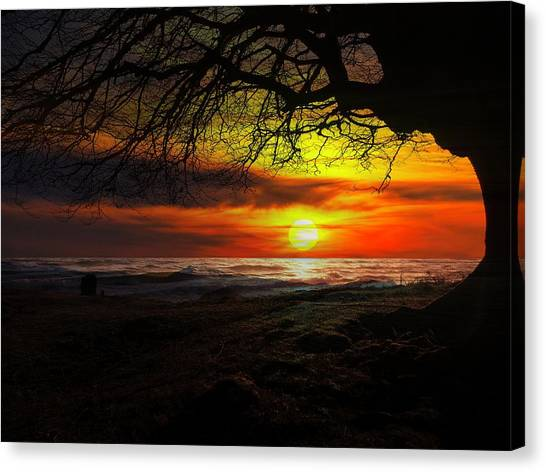 Contemporary Art Canvas Print - Sunset Beach by Contemporary Art