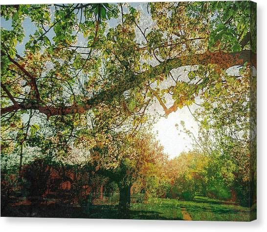 Canvas Print featuring the photograph Sunset  by Bee-Bee Deigner
