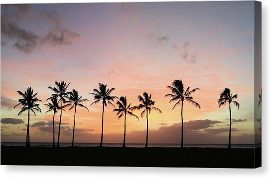 Sunset Behind The Palms Canvas Print