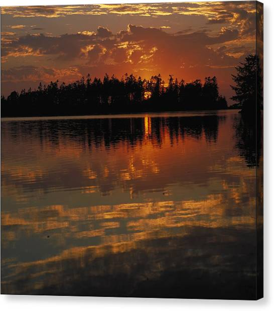 Cloud Forests Canvas Print - Sunset Behind The Trees On A Lake by Gillham Studios