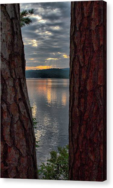 Canvas Print featuring the photograph Sunset Between Trees  by Betty Pauwels
