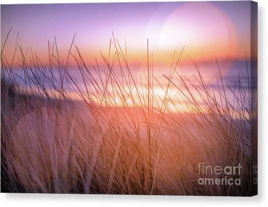 Sunset Bokeh Canvas Print by Inger Vaa Eriksen