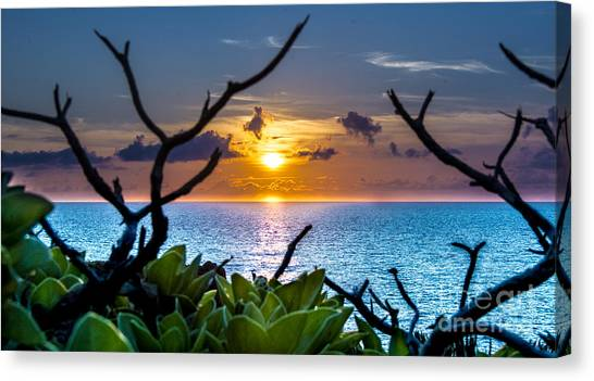 Sunset By The Point Canvas Print