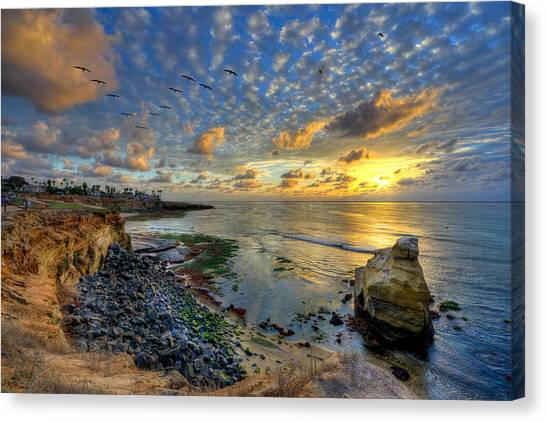 Sunset Cliffs With Brown Pelicans Canvas Print