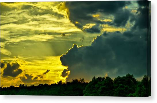 Sunset Cloud Animal Canvas Print by Edward Myers