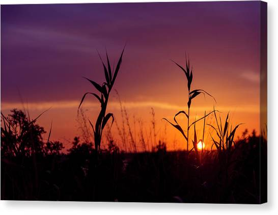 Canvas Print featuring the photograph Sunset Colours by Nikos Stavrakas