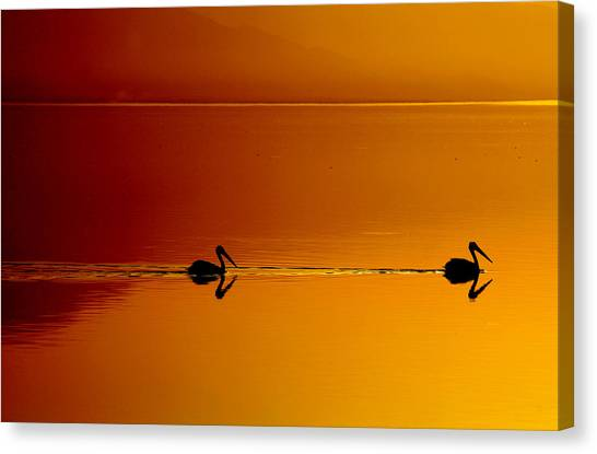 Sunset Cruising Canvas Print