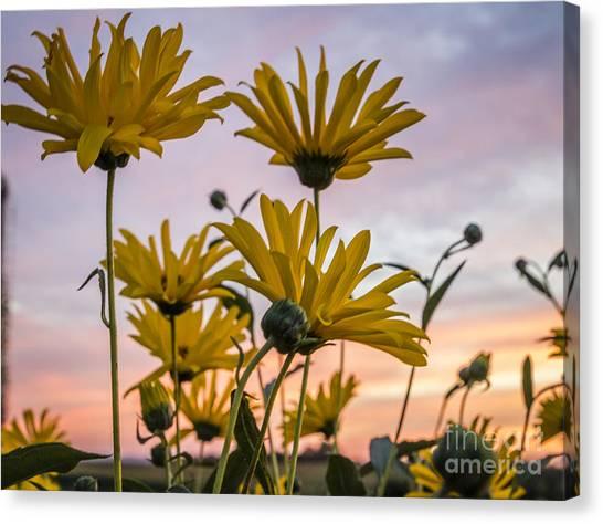 Sunset Delight Canvas Print