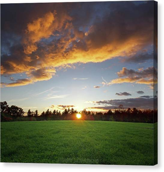 Sun Rays Canvas Print - Sunset Field by Jerry LoFaro
