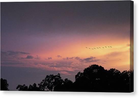 Sunset Horizon Canvas Print - Sunset Flight by Jessica Jenney