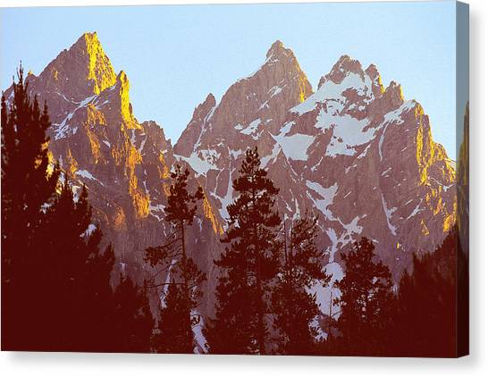 Sunset Gold Tetons Nat Canvas Print by Alan Lenk