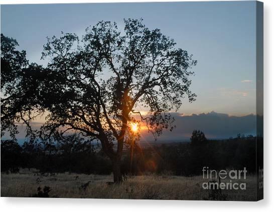 Sunset In Chico Canvas Print by Richard Verkuyl