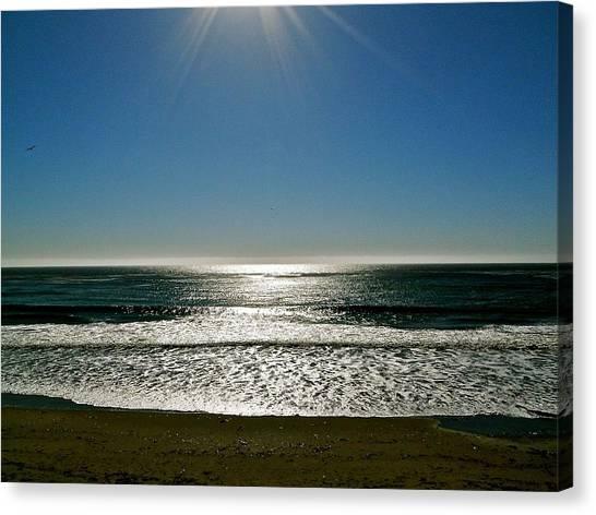 Sunset Light Canvas Print by Liz Vernand