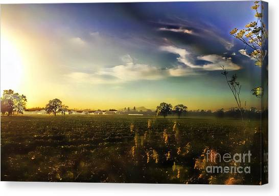 Sunset Magic Canvas Print