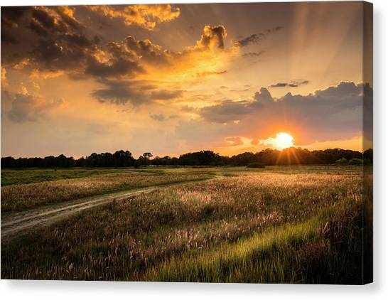 Horse Farms Canvas Print - Sunset Meadow by Marvin Spates