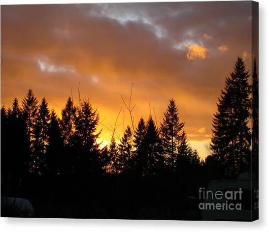 Sunset My Front Yard Canvas Print by Mary Jo Zorad