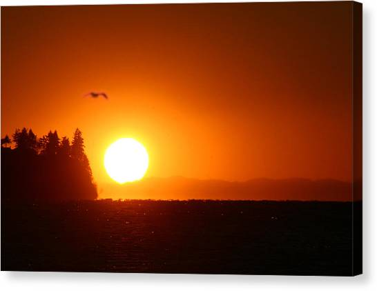 Sunset On Birch Bay Canvas Print by Julius Reque