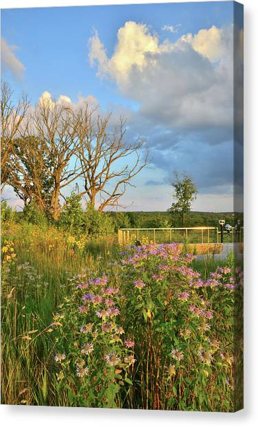 Prairie Sunrises Canvas Print - Sunset On Boone Creek Conservation Area by Ray Mathis