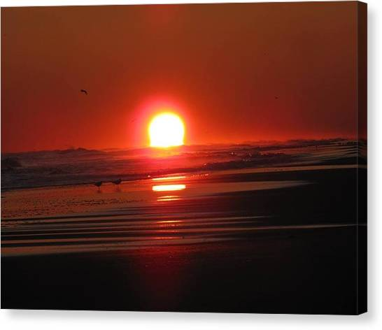 Trout Canvas Print - Sunset On The Sea by Laura Henry