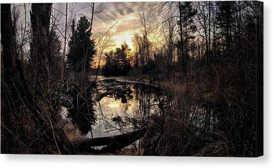 Rebirth Canvas Print - Sunset Over A Forest Pond  #sunset by Blake Butler