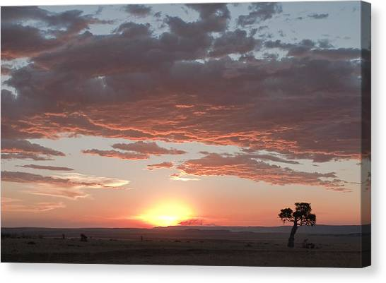 Sunset Over The Mara Canvas Print