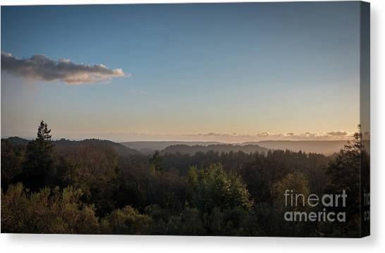 Sunset Over Top Of Dense Forest Canvas Print