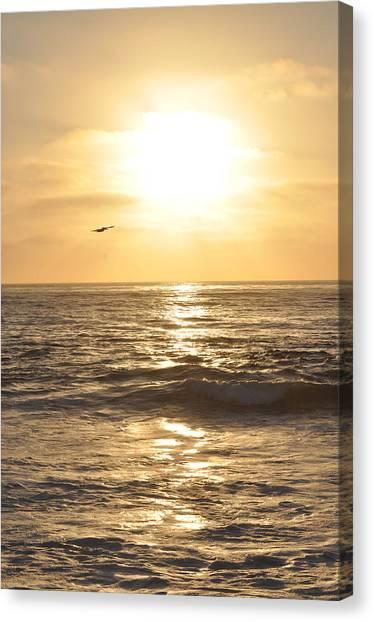 Sunset Pelican Silhouette Canvas Print