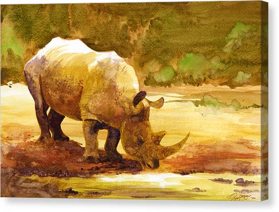Rhinos Canvas Print - Sunset Rhino by Brian Kesinger